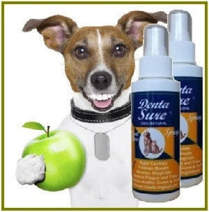 Dentasure 100% Natural Oral Care for Dogs & Cats