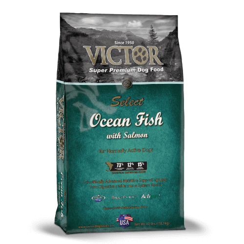 Victor Ocean Fish Dog Blend