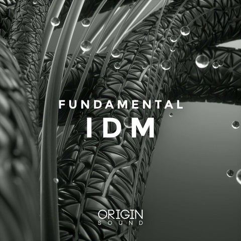 Fundamental IDM