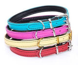 FRISKY Quad Layered Collar Chrome Accesories