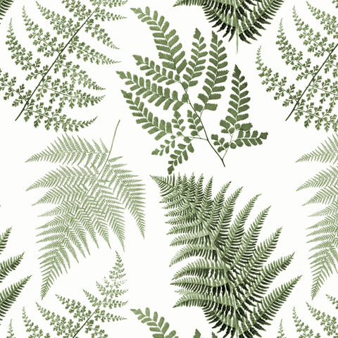 Fernery - Green