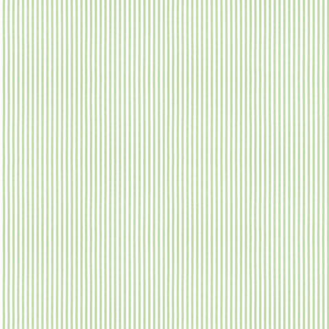 Petit Stripe - Green