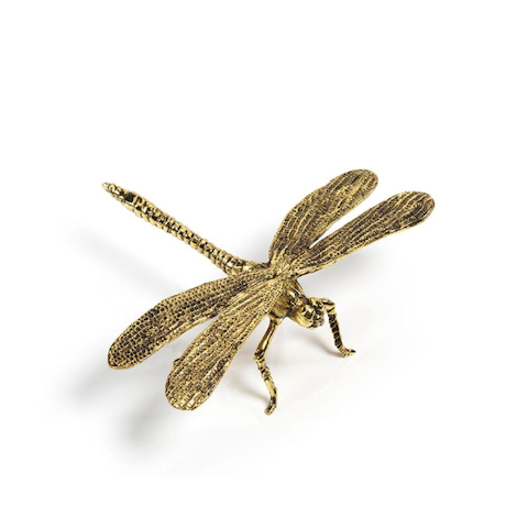 Gold Dragonfly
