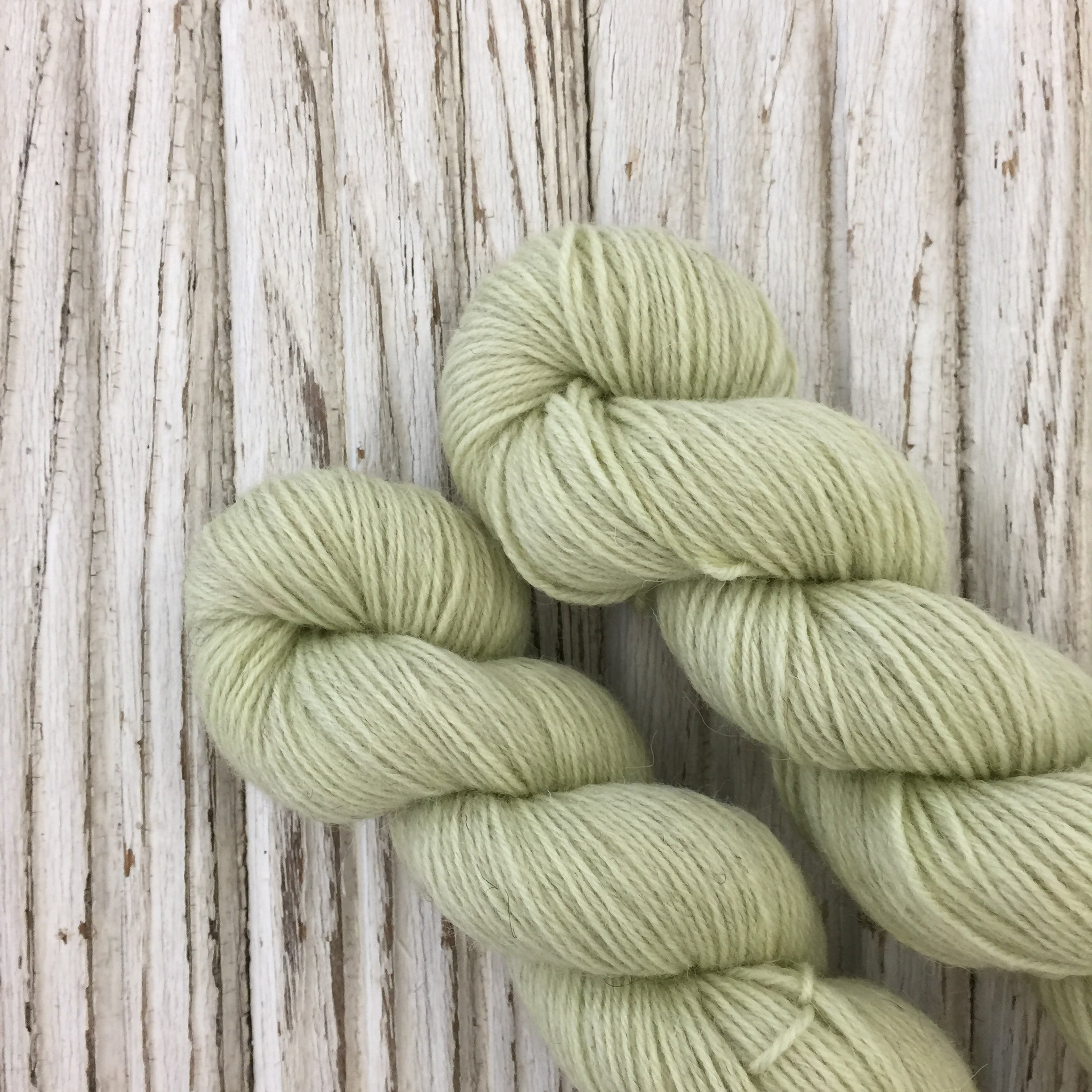Miss Bingley  WGLY Rustic non superwash