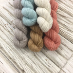 WGLY Rustic  Mini skein set - Earth tones