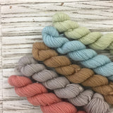 WGLY Rustic 4 ply  Subtle Mini skein set