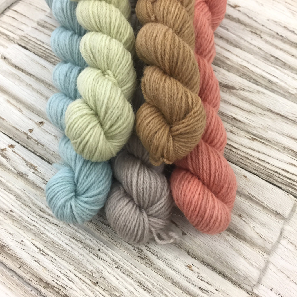 WGLY Rustic  Mini skein set