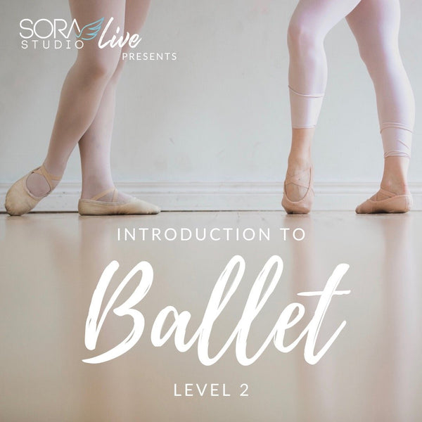 Introduction to Ballet Level 2