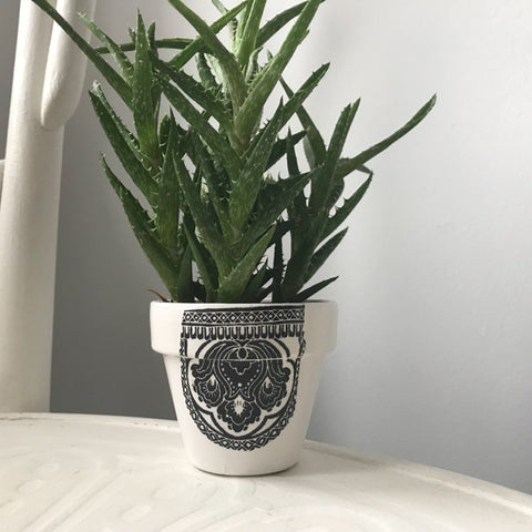 Black & White Cactus Succulent Mini Pot