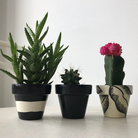 Black & White Leaf Mini Pots Set of 3