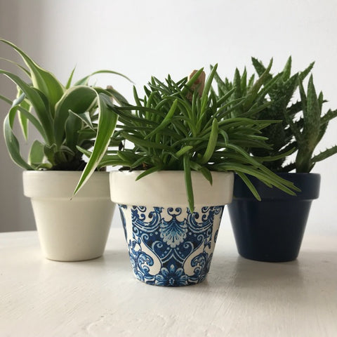 Blue & White Damask Mini Pots Set of 3
