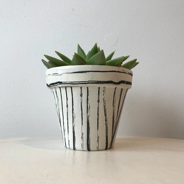 Black Vintage Stripes Plant Pot 11cm - Palm Pot & Peony