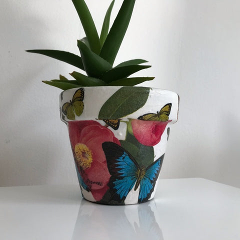 Camellia and Butterfly Cactus Pot Small 11cm - Palm Pot & Peony