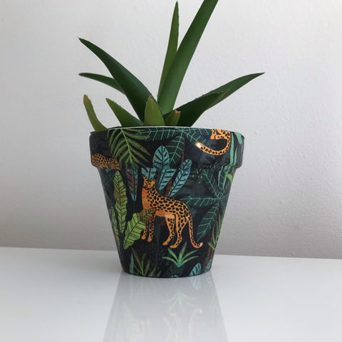 Leopard in the Jungle Black Cactus Pot 11cm - Palm Pot & Peony