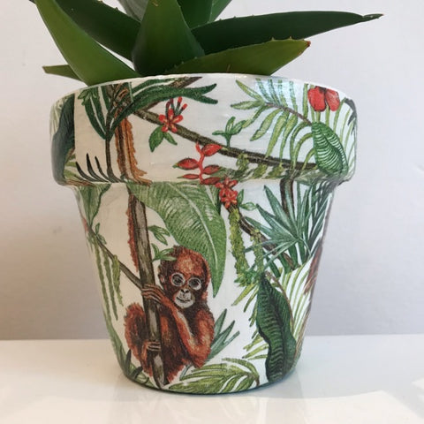 Monkey Business Jungle Cactus Pot 11cm - Palm Pot & Peony