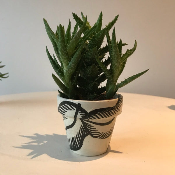 Banana Leaf Mini Cactus Succulent Pot - Palm Pot & Peony