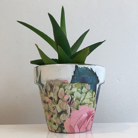 Antique Pink Rose Cactus Pot 11cm - Palm Pot & Peony