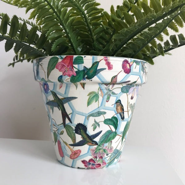 Hummingbird Lattice Flower Pot 15cm - Palm Pot & Peony