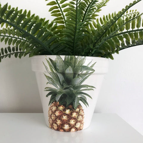 Classic Golden Pineapple Terracotta Pot 15cm - Palm Pot & Peony