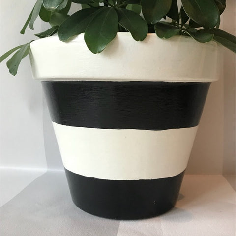 Black White Stripe Large Plant Pot & Saucer 21cm - Palm Pot & Peony