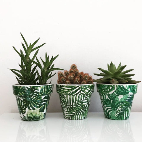 Green Palm Leaves 11cm Terracotta Pots Set of 3 - Palm Pot & Peony