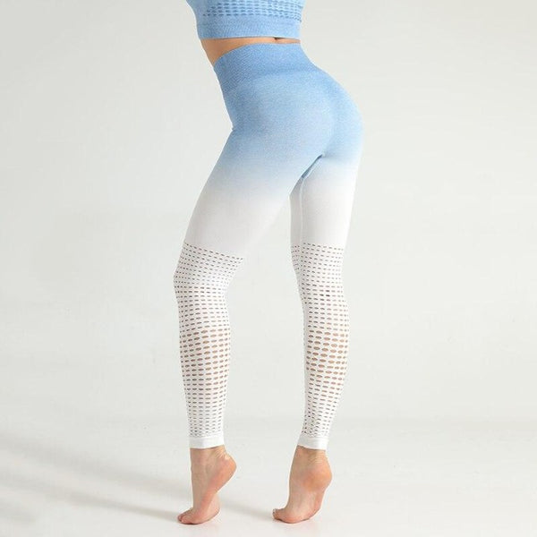 Ombre Breathable Fitness Leggings Blue