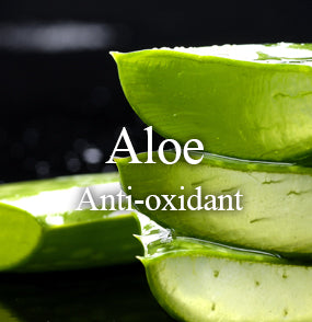 jet-2-in-1-anti-oxidant-mask-kit-ingredient-aloe