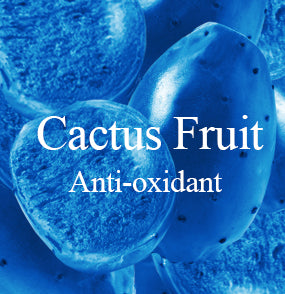 jet-2-in-1-anti-oxidant-mask-kit-ingredient-cactus-fruit