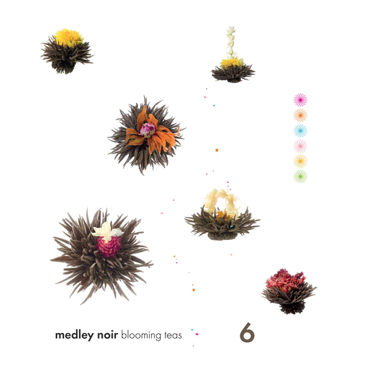 Medley Noir Blooming Tea