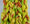 Cotton Spinning Fiber - green, yellow, orange