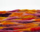 unbraided CVM/Cormo roving - pink, purple, yellow, orange, and red