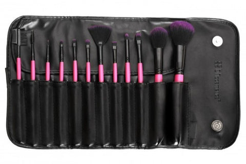 Set of 12 Brush Set