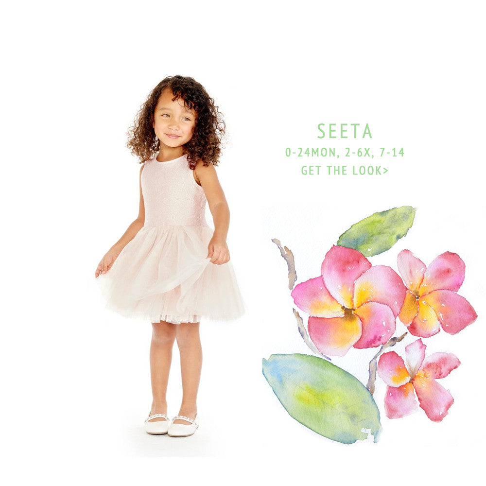 Seeta Blush Lace Tutu Dress