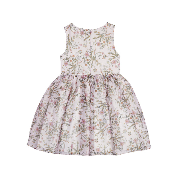 Chica Floral Blush Dress
