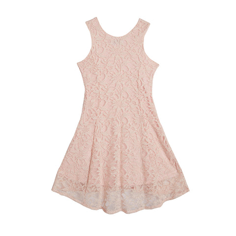 Eliza Blush Lace Dress