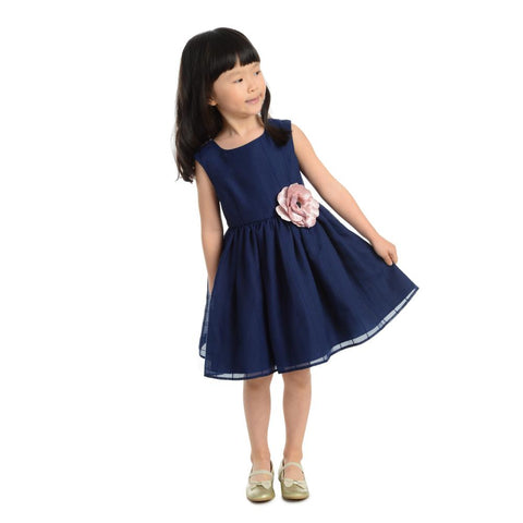 Danielle Navy Organza Dress