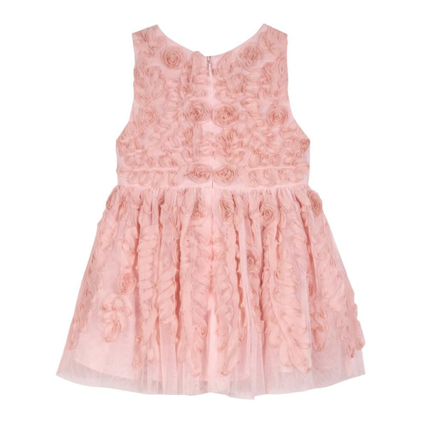 Dress - Evelyn Blush Social Dress
