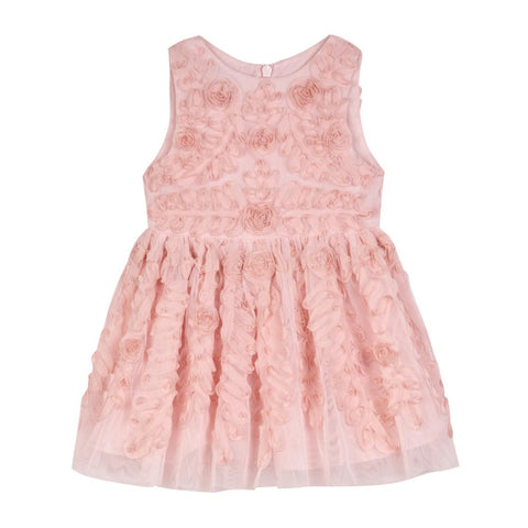 Evelyn Blush Social Dress