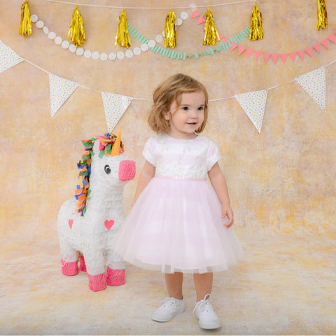 Isabel Light Pink Tutu Dress