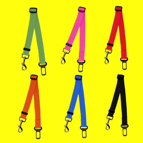 A Safety Dog Harness For Your Car FREE (Just Pay Shipping)