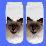 "Wow...""FREE"" Cat Socks For Crazy Cat Lovers!"