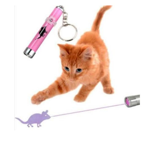 Kitty Laser Pointer With An Image!