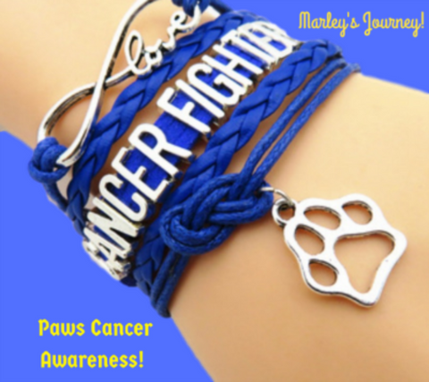 Paws Fighting Cancer Bracelet!
