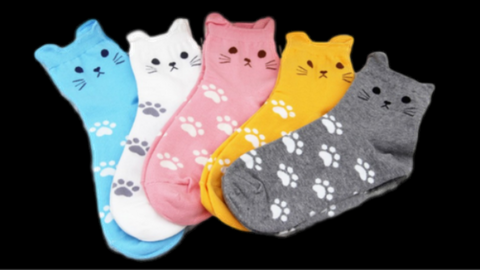 Cute Cat Paw Socks!..