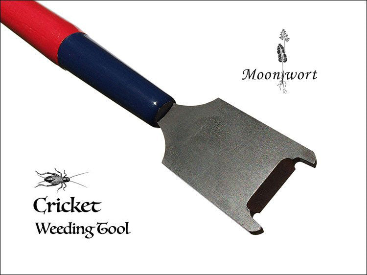 Cricket Weeding Tool vs. Burdock