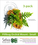 Pillbug Orchid Mount - Small 3-pack (Selva Terrarium)