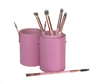 JUST Released! Pastel Pink Brush Set Of 5 With Matching Case.