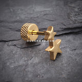 A Pair of Golden Double Star Fake Plug Earring-Gold