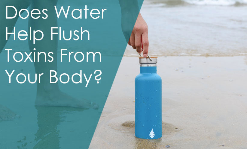 Does water help flush toxins from your body?