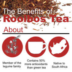 the benefits of rooibos tea
